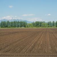 「日高山脈と畝の農村風景」じゃらん6月号に写真が載りました!