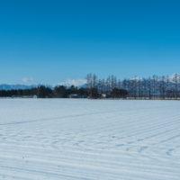 厳しい冷え込み、快晴、真っ白な雪原の後ろは日高山脈。
