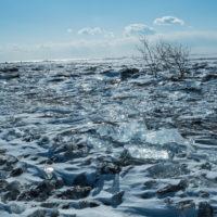 北海道・十勝 冬こそ写真撮影の旅へ~昨年投稿のコラムより~