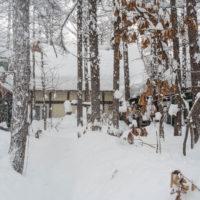 今年の2月は雪が多い?3日連続の大雪です。