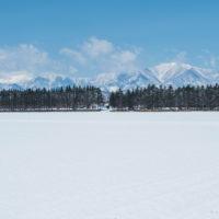 4月中旬ですが・・2夜連続積雪で畑はすっかり雪景色。