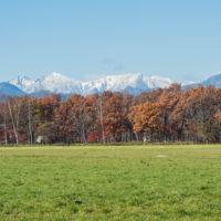 日高の山並み・・遅い冠雪。カラマツの紅葉・・見頃です。