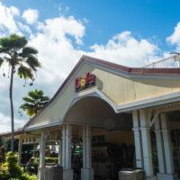 2018常夏の楽園ハワイ(ホノルル・オワフ島)へvol.4~ザ・バスでノースショアへ~