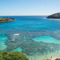2018常夏の楽園ハワイ(ホノルル・オアフ島)へvol.6~珊瑚の海ハナウマ湾~