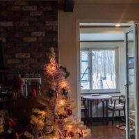 白いクリスマスツリーとエゾリス君(ホンモノ)がコラボ!