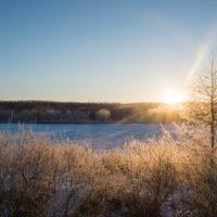 ついに極寒期がやって来ました。更別の霧氷も見頃です。