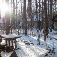 憧れの雪あるクリスマス・・エゾリス君とお祝いです。