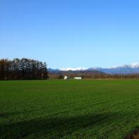私の好きな・・「中札内村・11月の農村風景」