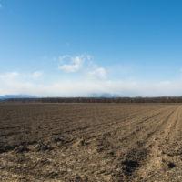 12月後半なのに・・中札内村は雪の無い農村風景です!