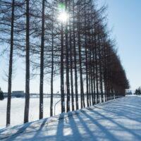 冬の十勝らしい快晴の農村風景と日高山脈の眺望!
